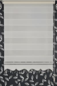 Klipart Açık Kasa Zebra Perde Çamlıca F21