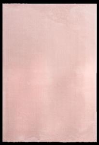 Dinarsu Halı Loft Serisi 37 55 Rose