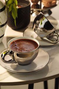 Kütahya Porselen Stella  Double Kahve Takımı Platin Kaplama