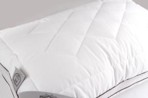 Jereed 2 Adet Klimalı Pazen Pamuklu Silikon Yastık 50x70cm