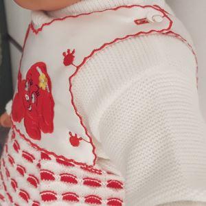 Köpek Baskılı Kırmızı 3 Li Kız Bebek Triko