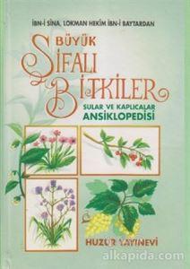Büyük Şifalı Bitkiler, Sular ve Kaplıcalar Ansiklopedisi (2. Hamur) Ramazan Yıldız